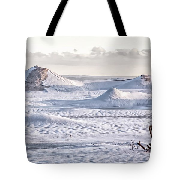 Frozen Waves On Erie Tote Bag