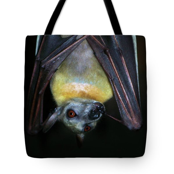 Tote Bag featuring the photograph Fruit Bat by Anthony Jones