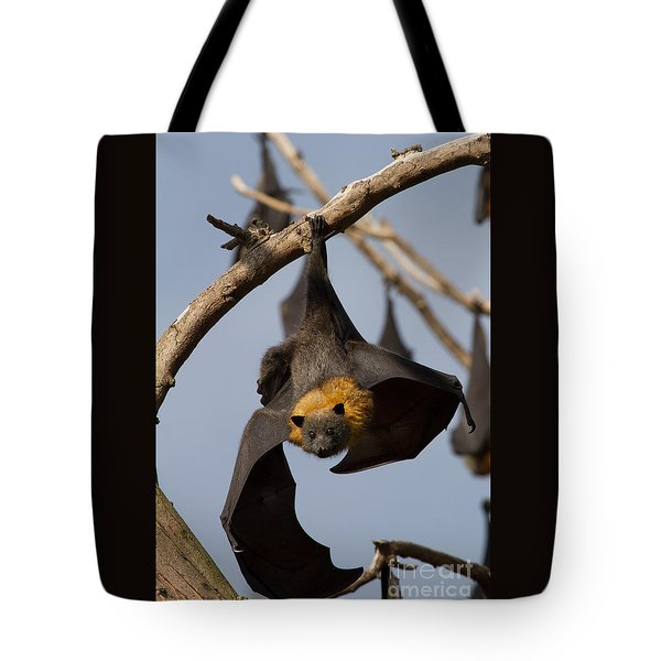 Fruit Bat Hanging Tote Bag