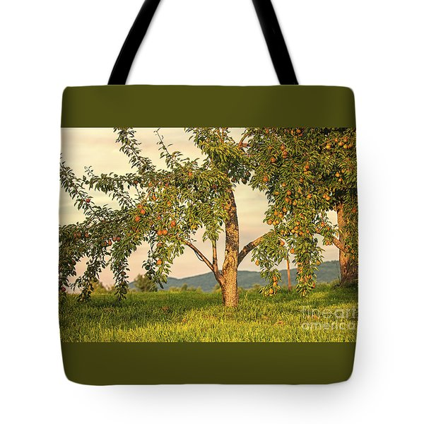 Tote Bag featuring the photograph Fruit In The Orchard by Mary Lou Chmura
