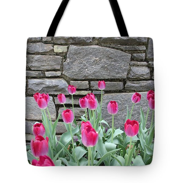 Fuchsia Color Tulips Tote Bag
