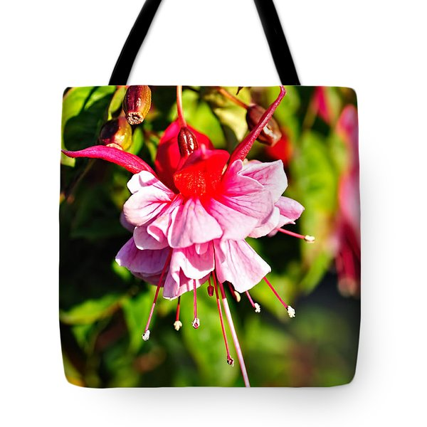 Fuchsia Enjoying The Sunshine Tote Bag by Kaye Menner