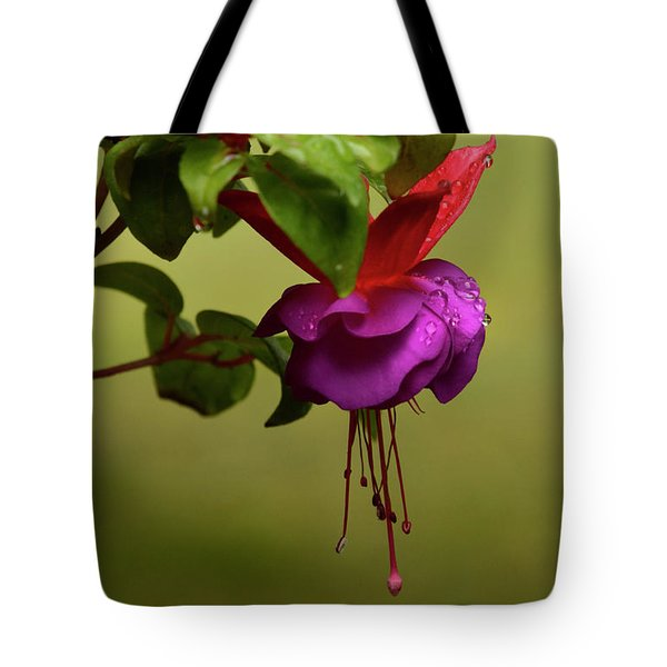 Fuchsia Fuchsia Tote Bag by Ann Bridges