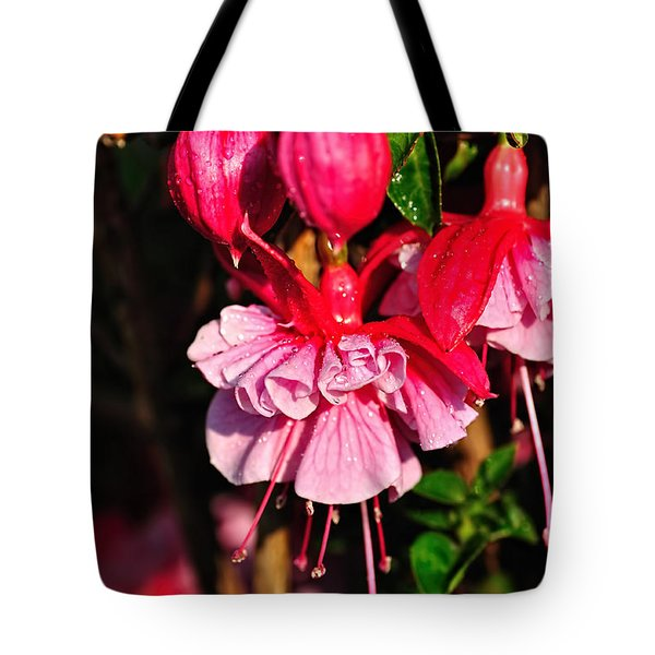 Fuchsias With Droplets Tote Bag