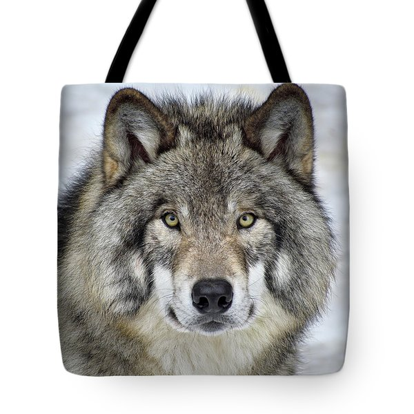 Full Attention  Tote Bag by Tony Beck