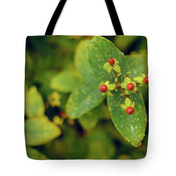 Fall Berry Tote Bag
