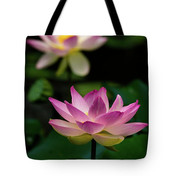 Tote Bag featuring the photograph Full Blooming Dual Lotus Lilies by Dennis Dame