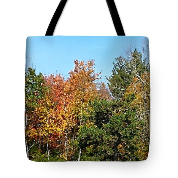 Full Fall Tote Bag