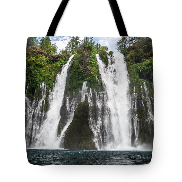 Full Frontal View Tote Bag