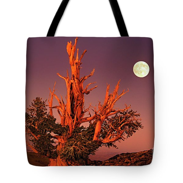Tote Bag featuring the photograph Full Moon Behind Ancient Bristlecone Pine White Mountains California by Dave Welling