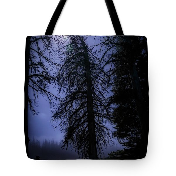 Full Moon In The Woods Tote Bag by Cat Connor