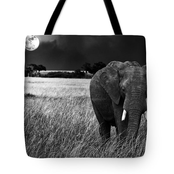 Full Moon Night Tote Bag by Charuhas Images