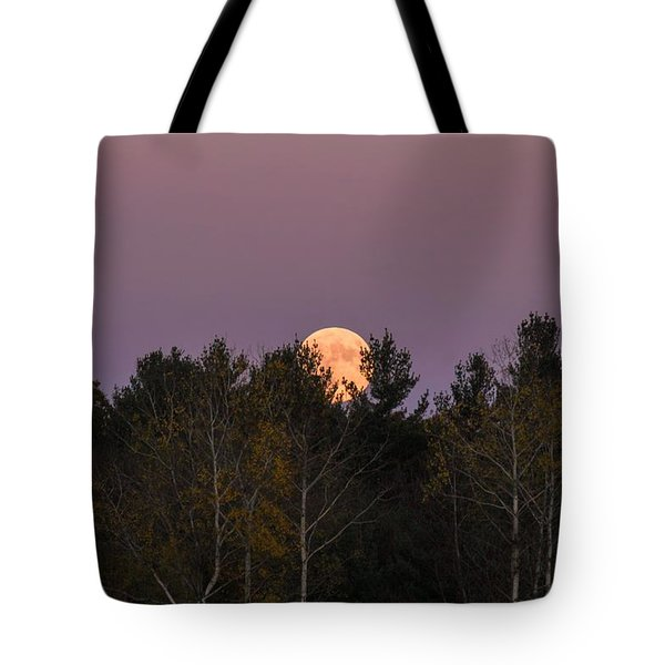Full Moon Over Orchard Tote Bag