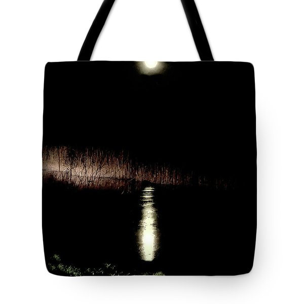 Full Moon Over Piermont Creek Tote Bag