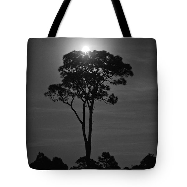Full Moon Pearl  On Old Longleaf Pine Setting Tote Bag