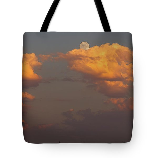 Full Moonrise Over Tree Silhouette Tote Bag by David Gn