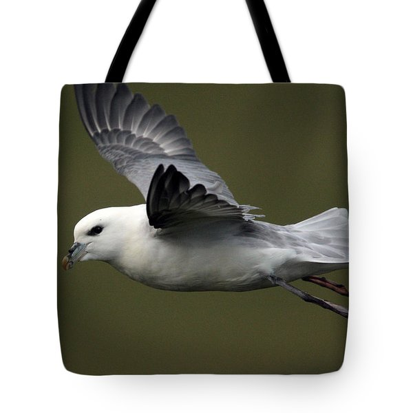 Fulmar In Flight Tote Bag