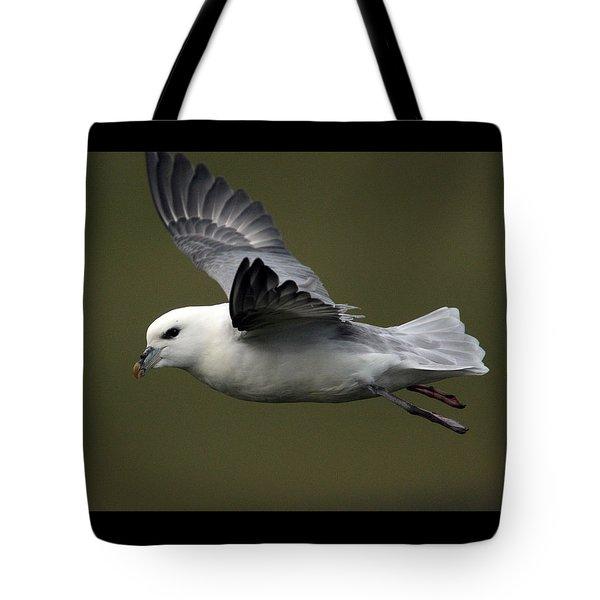 Fulmar In Flight Tote Bag