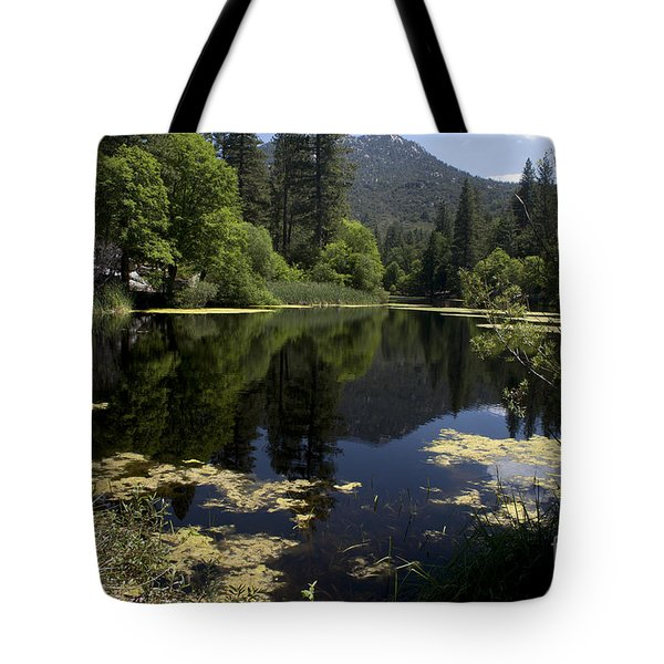 Fulmor Lake Tote Bag by Ivete Basso Photography