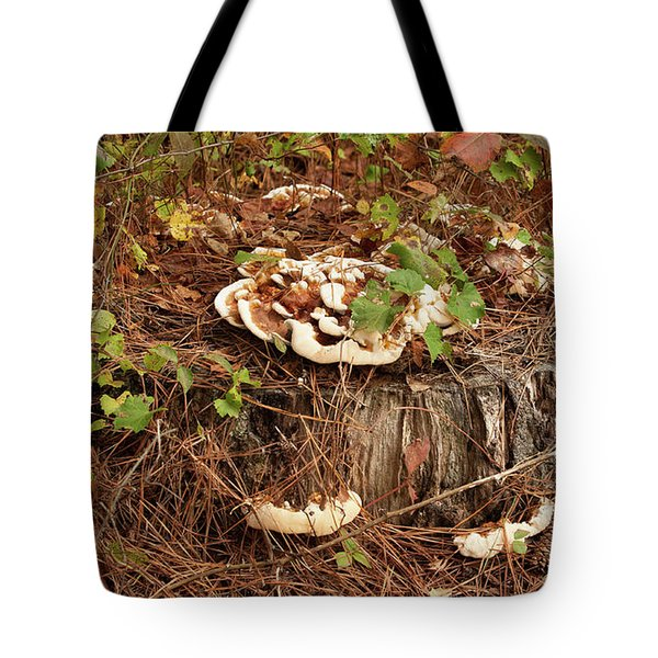 Tote Bag featuring the photograph Fungi And Needles And Tree Trunk  Oh My by Carol Lynn Coronios
