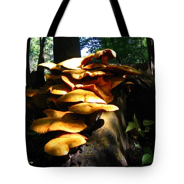Tote Bag featuring the photograph Fungus Colony 23 by Maciek Froncisz