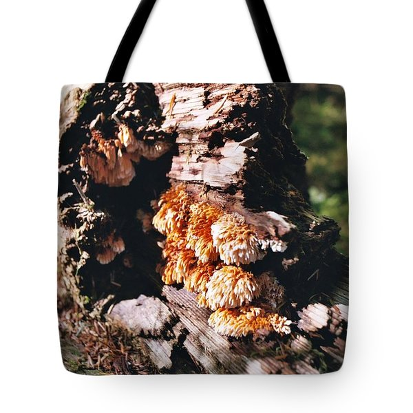 Fungus Is Beautiful Tote Bag