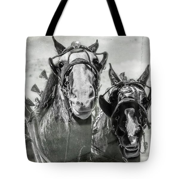 Tote Bag featuring the photograph Funny Draft Horses by Mary Hone