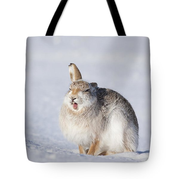 Funny Face - Mountain Hare - Scottish Highlands  #13 Tote Bag