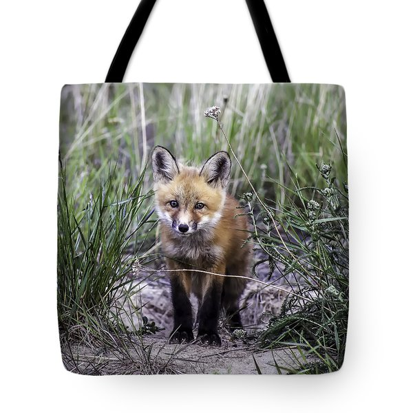 Furry Friend Tote Bag