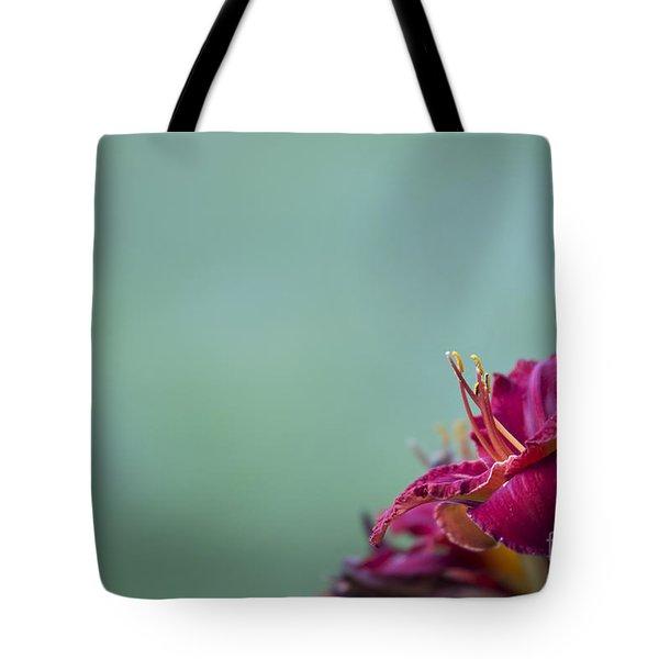 Fuchsia In Bloom Tote Bag