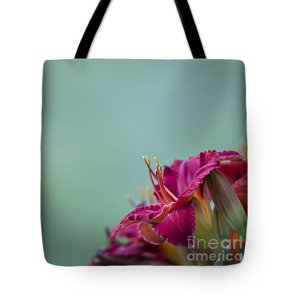 Fuchsia In Bloom Tote Bag by Andrea Silies