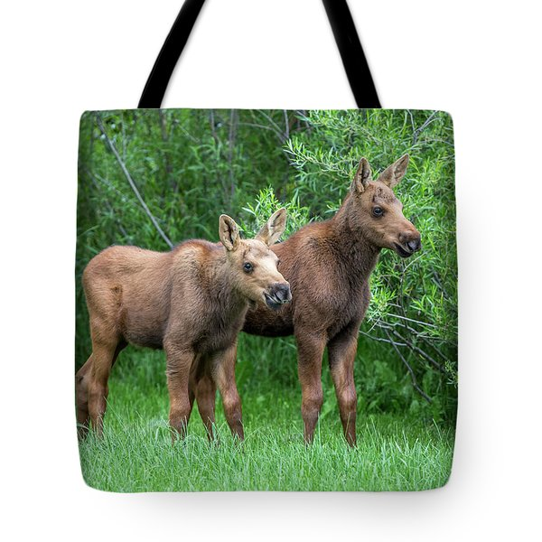 Future King  Tote Bag