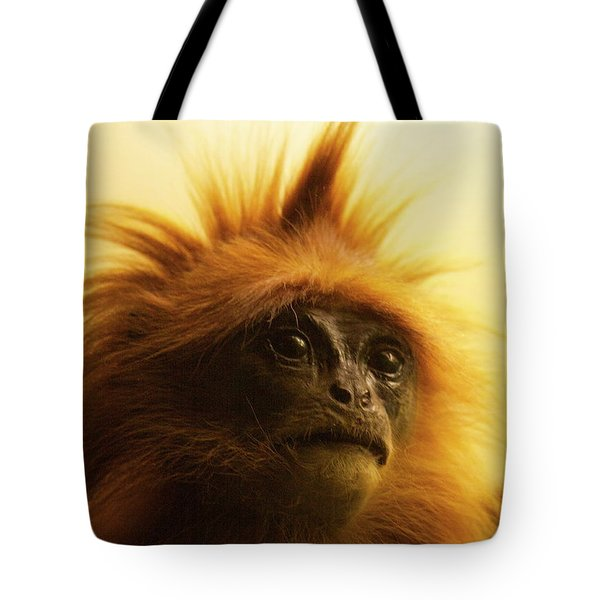 Tote Bag featuring the photograph Fuzzhead by Xn Tyler