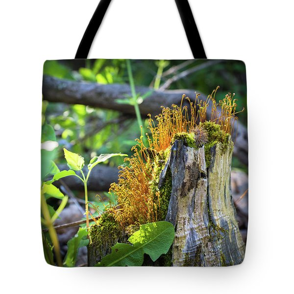 Tote Bag featuring the photograph Fuzzy Stump by Bill Pevlor