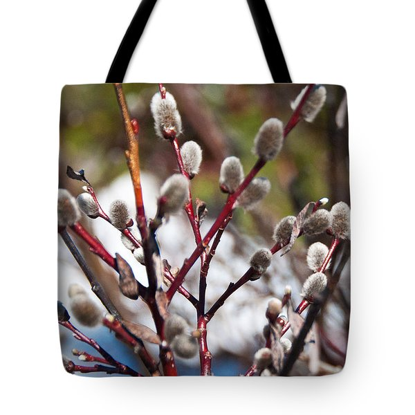 Fuzzy Wuzzy Tote Bag by Bob and Nancy Kendrick