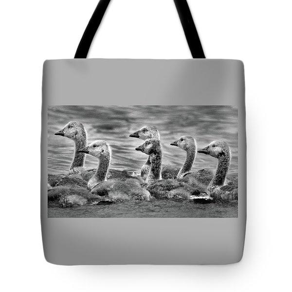 Gaggle Of Goslings Tote Bag