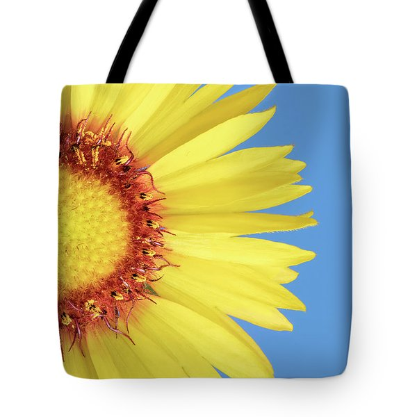 Tote Bag featuring the photograph   Gaillardia Aristata   Blanketflower by Jim Hughes