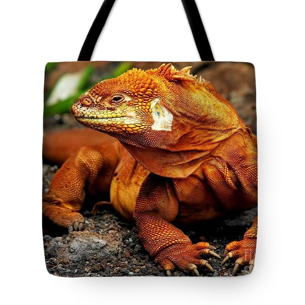Galapagos Iguana Tote Bag by Rod Jellison