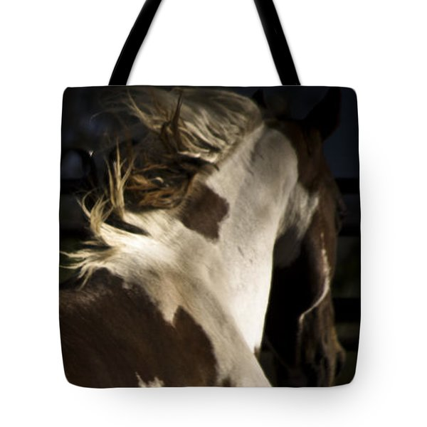 Tote Bag featuring the photograph Galisteo 1 by Catherine Sobredo