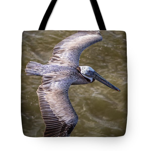 Tote Bag featuring the photograph Galveston Pelican by Gregory Daley  PPSA