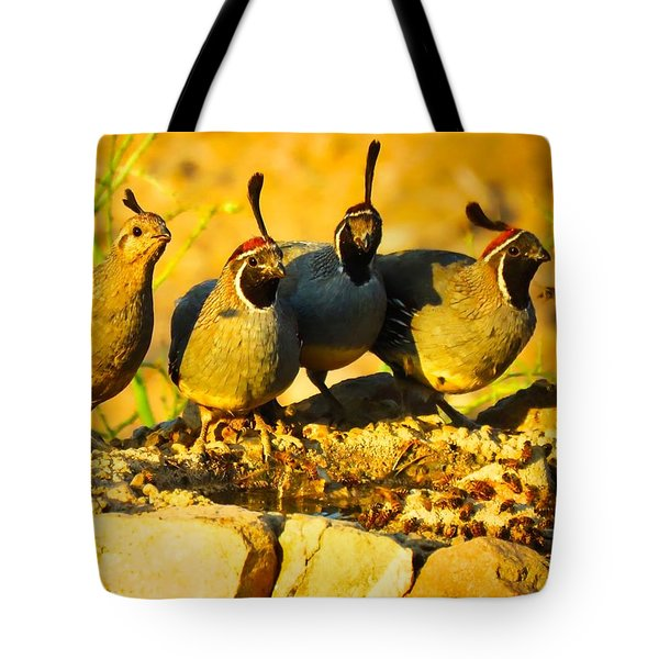 Gambel's Quail Foursome Tote Bag