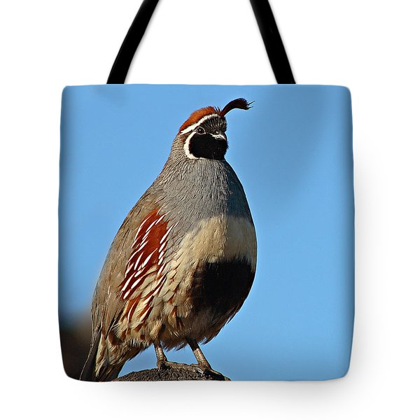 Gambel's Quail On Sunny Perch Tote Bag