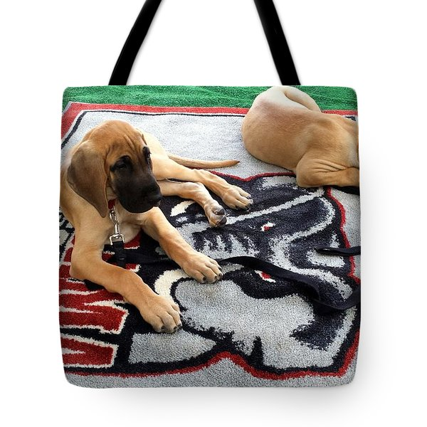 Gameday Great Dane Puppies Tote Bag