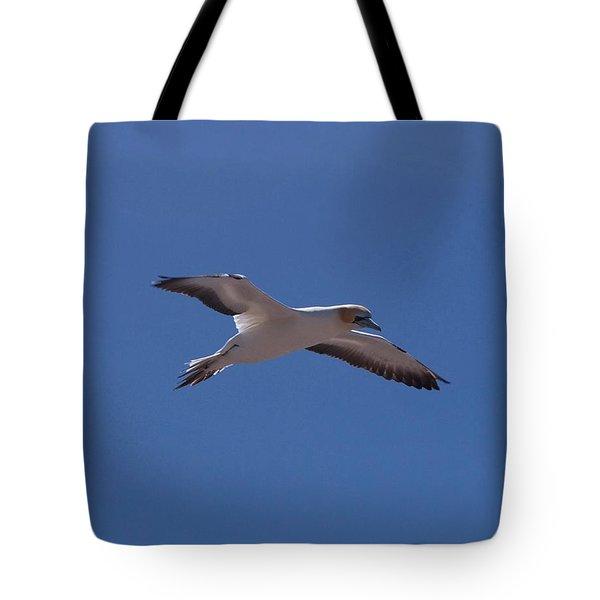 Gannet #1 Tote Bag