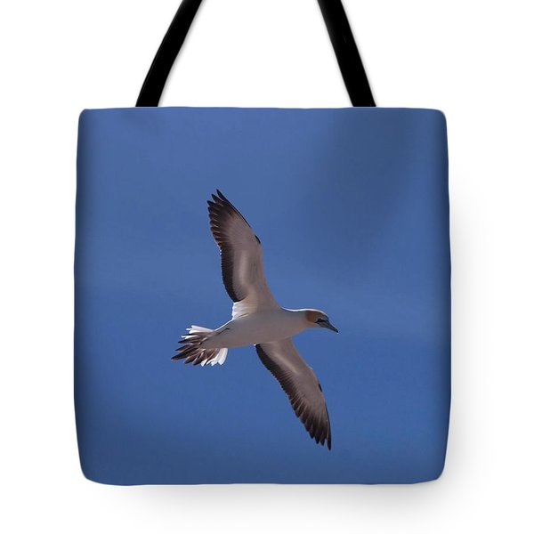 Gannet #2 Tote Bag