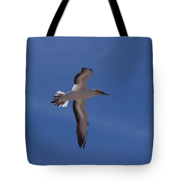 Gannet #3 Tote Bag