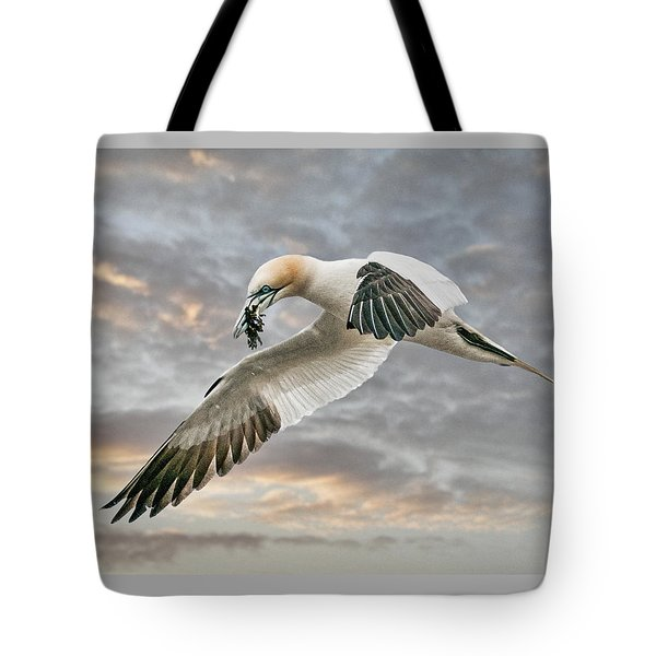 Tote Bag featuring the photograph Gannet With Seaweed by Brian Tarr