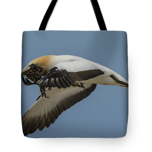 Tote Bag featuring the photograph Gannets 1 by Werner Padarin