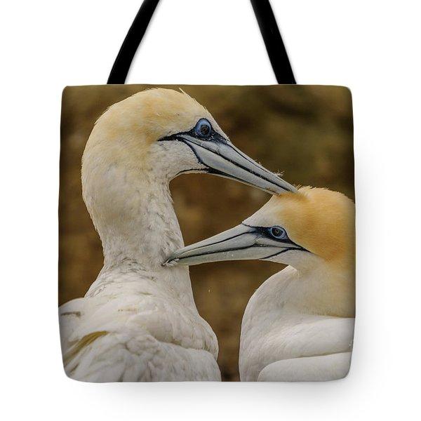 Gannets 4 Tote Bag by Werner Padarin