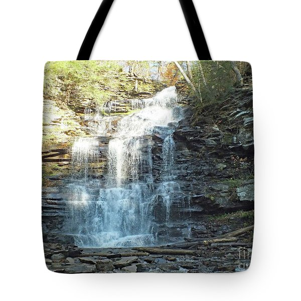 Ganoga Falls 2 - Ricketts Glen Tote Bag